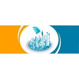 Kit point d'accès / hotspot  WiFi 2,4 ghz Omnidirectionnel Longue portée 12dbi 120cm Amplifié